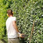 Costo promedio jardinero