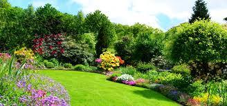 El jardinero precio