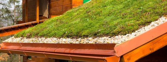 techo verde precios